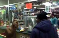 Naked Crackhead Tripping Inside Of Detroit Corner Store!