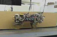 Incredible: MIT Cheetah Robot Can Sense & Jump Over Hurdles!