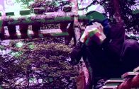 MAK11 – C4 [User Submitted]