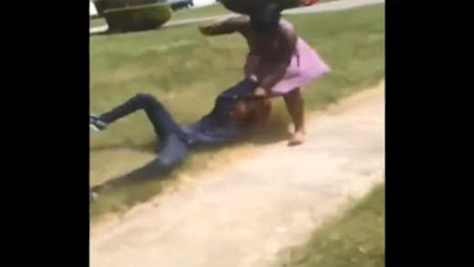 Damn-Chick-Gets-Punched-While-Getting-Dragged-For-Talking-About-A-Girl's-Mother